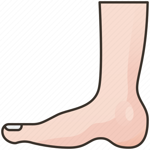 Ankle, foot, human, leg, podiatry icon - Download on Iconfinder