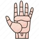 fingers, hand, human, palm, touch icon