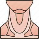 chin, human, muscle, neck, throat