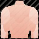back, body, dorsal, human, muscular icon
