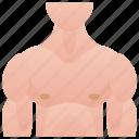 bodybuilder, chest, human, muscular, torso icon