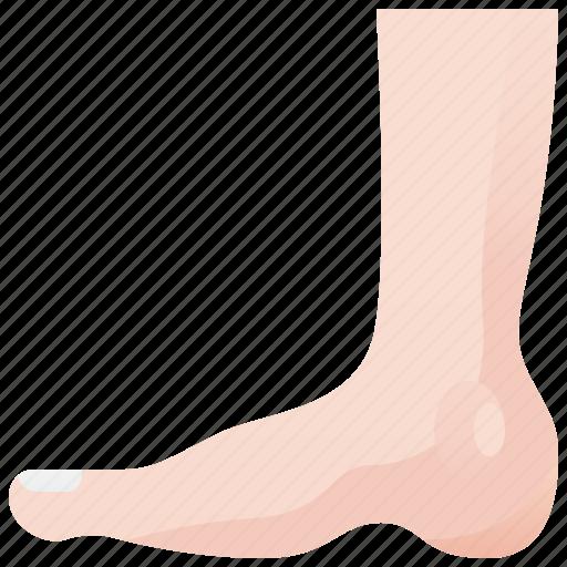 ankle, foot, human, leg, podiatry icon