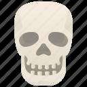 death, head, human, skeleton, skull icon