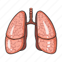 anatomy, human, internal, lung, medicine, organ icon