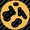 cell, chromatids, chromosome, genetics, rod icon