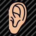 ear, listen, medical, organ, sound icon