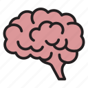 brain, creative, idea, mind, neuroscience, organ icon