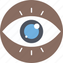 eye, human eye, monitoring, vision. eyeball icon