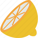 food, juicy, lemon, sliced, vegetable icon