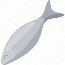 fish, food, illustrative, palpable, protein, proteins, seafood icon