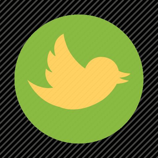 bird, twiiter icon