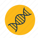 biology, biotechnology, dna, lab icon