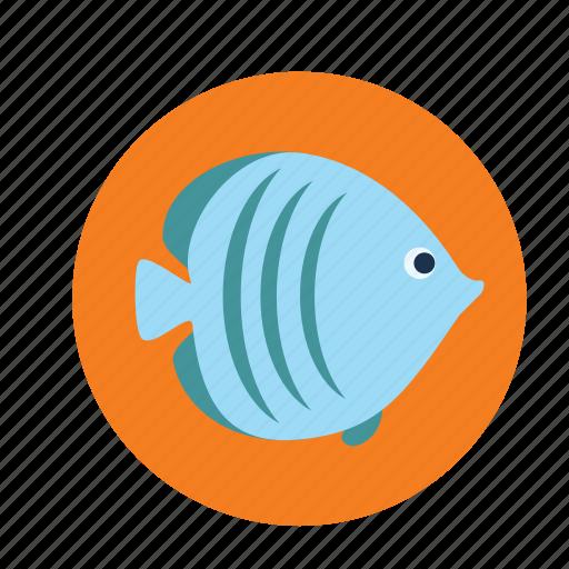 aquarium, fish icon