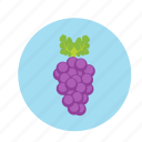 fruit, grapes, grapevine, juice, wine grape icon