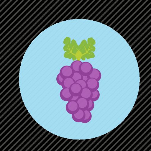fruit, grapes, grapevine, juice, wine grape icon