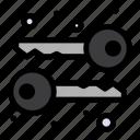 cryptography, keys, symmetric icon