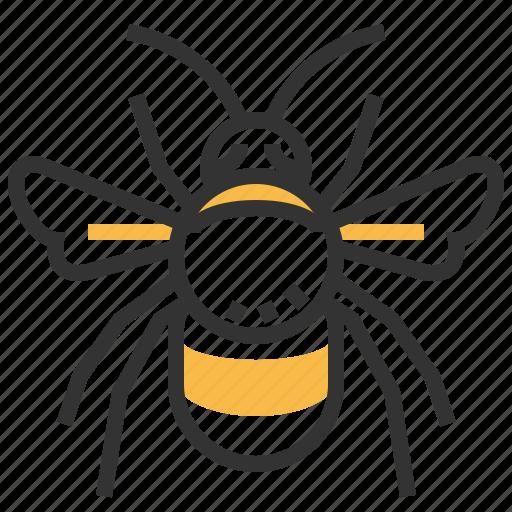 animal, bug, bumblebee, insect icon