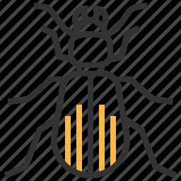 animal, beetle, bug, ground, insect icon