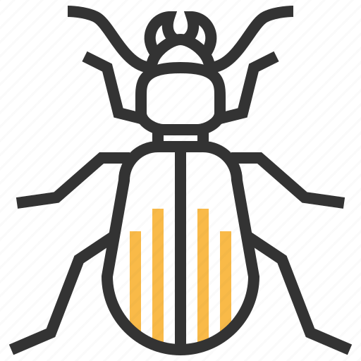 animal, beetle, bug, ground, insect icon
