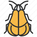 animal, beetle, bug, insect, net, winged icon