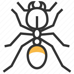 animal, bug, insect, pheidole icon
