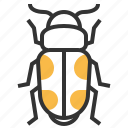 animal, beetle, bug, insect, sap icon