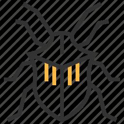 animal, bug, insect, stinkbug icon