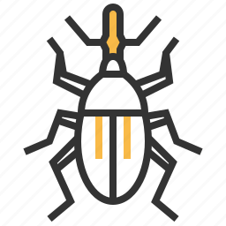 animal, bug, insect, weevil icon