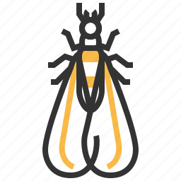 alates, animal, bug, insect icon