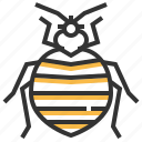 animal, bedbug, bug, insect icon