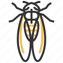 animal, bug, cicada, insect icon