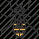 larva, animal, bug, insect