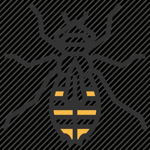 animal, bug, insect, larva icon