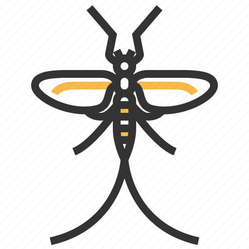 animal, bug, insect, mayfly icon