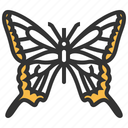 animal, bug, insect, machaon, papilio icon