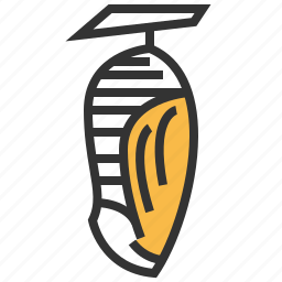 animal, bug, insect, pupa icon