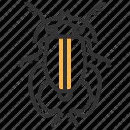 animal, bug, buqueti, insect, sagra icon