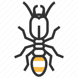 animal, bug, insect, termite icon