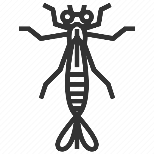 animal, bug, damselfly, insect, nymph icon