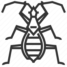 animal, bug, damsel, insect icon