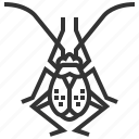 animal, bug, flea, garden, hopper, insect icon