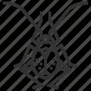 flea, garden, hopper, animal, bug, insect