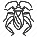 animal, bug, footed, insect, leaf icon