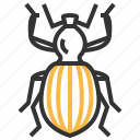 animal, antlike, bug, insect, weevil icon