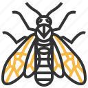 animal, bug, elm, insect, sawfly icon