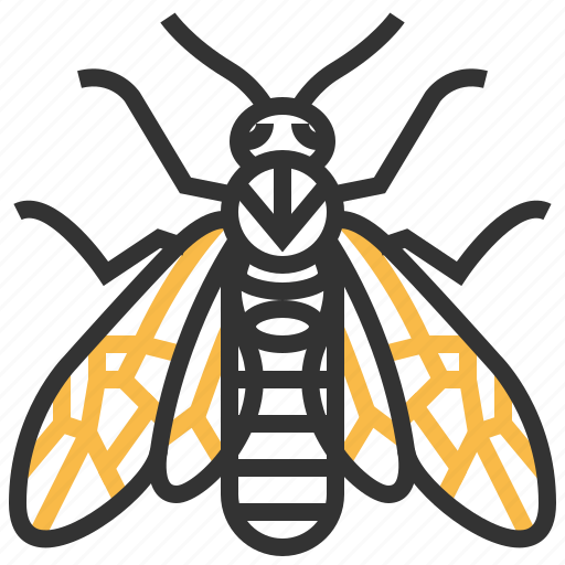 animal, bug, elm, insect, sawfly icon
