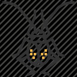 animal, bug, flea, garden, hopper, insect icon