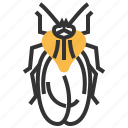 animal, bug, insect, lace icon