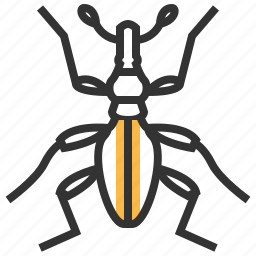 animal, insect, potato, sweet, weevil icon