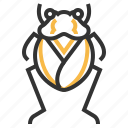 animal, bug, insect, toad icon